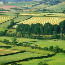 Оценка земельного участка для уменьшения кадастровой стоимости